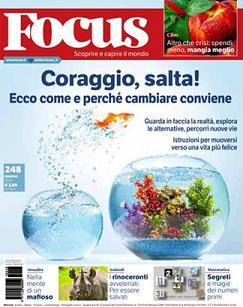 FocusMaggio